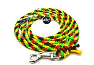 Handmade Kumihimo Rasta Leash by Kanji