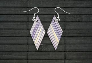 Earrings 032