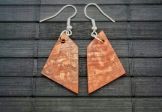 Earrings 041